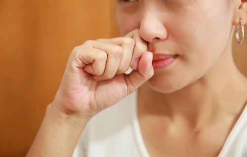 Nấm Vân Chi trong điều trị bệnh viêm xoang