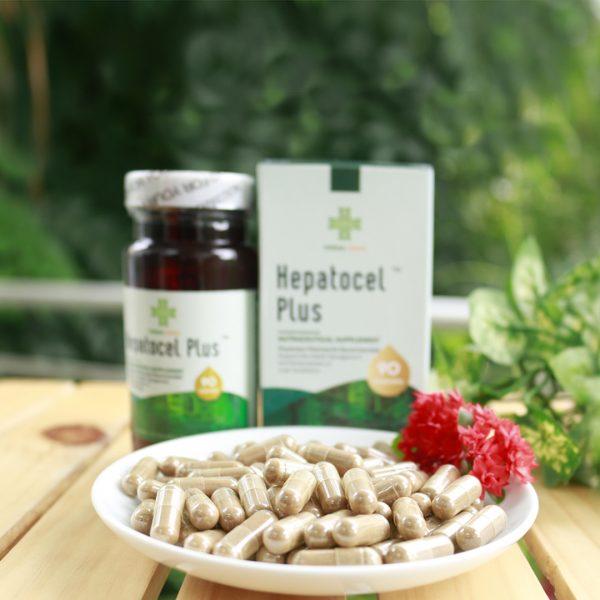 thao-duoc-teresa-herbs-hepatocel-plus-tang-cuong-chuc-nang-gan
