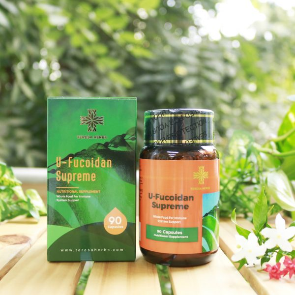 thao-duoc-teresa-herbs-fucoidan
