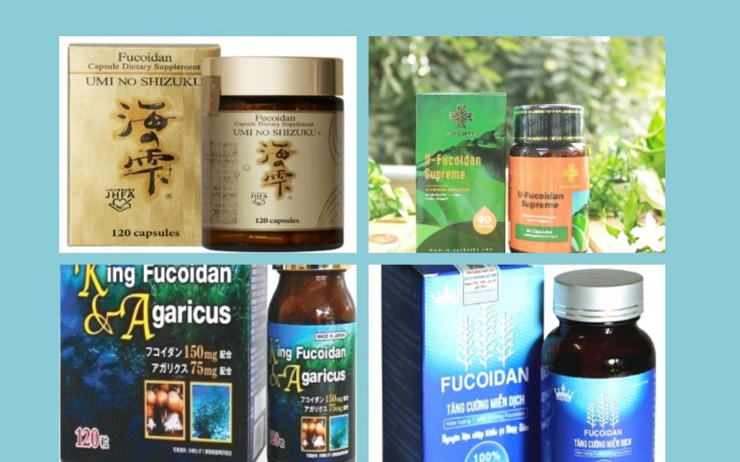 (Tiếng Việt) Fucoidan là gì? Tác dụng của Fucoidan, so sánh Fucoidan Mỹ và Fucoidan Nhật Bản